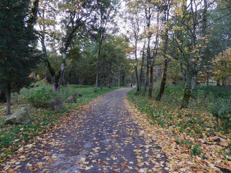 Początek szlaku w Dolinie Jaworowej