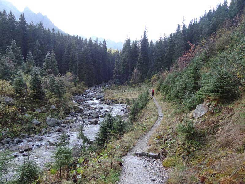 Szlak przy Jaworowym Potoku